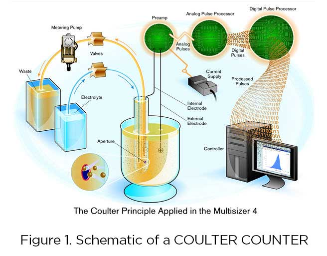Coulter Principle Multisizer